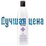 RR Line Yellowiness Shampoo SILVER STAR, 350 ml.