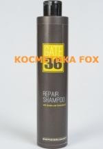 EMMEBI Gate 36 Rapair Shampoo  Восстанавливающий шампунь, 250 мл
