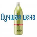 INEBRYA Shampooing contre la chute des cheveux ENERGY, 1000 ml